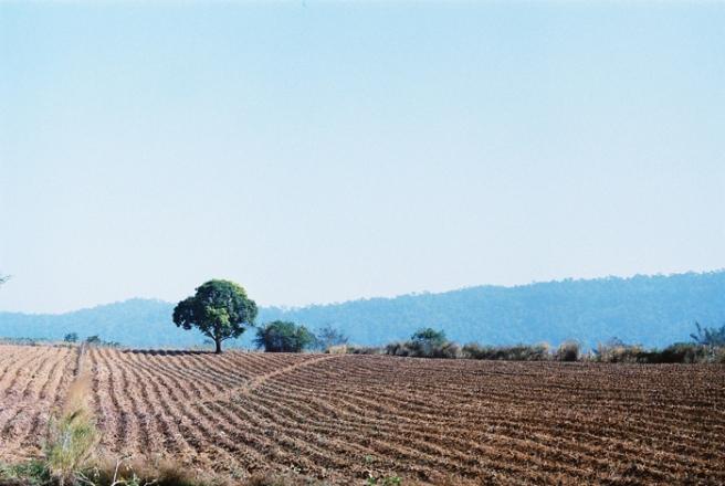 Kodakultramax400-8