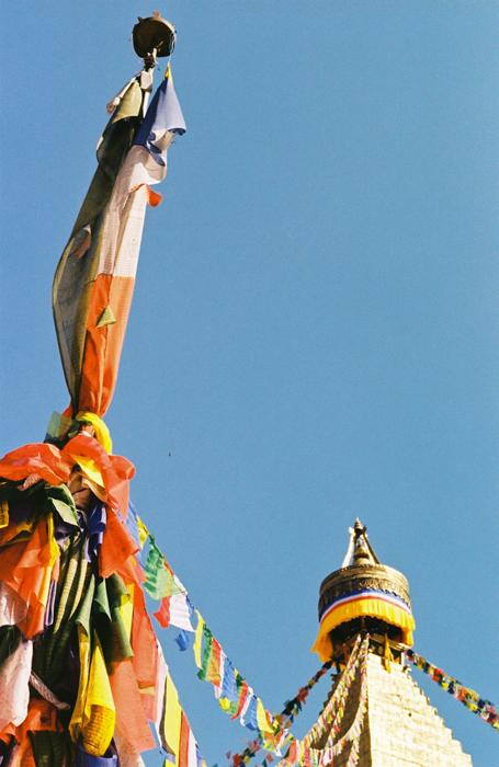 KODAKCOLORPLUS200-11